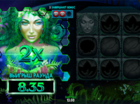 Lady Earth — Microgaming